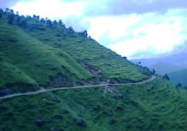 roads Way to my home pandoh mandi
