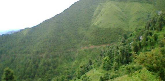 My HOme right side hills
